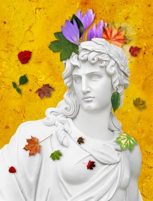 Die-Herbstzeitlose.png